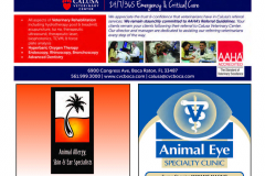 PB Vet Society Newsletter Spring 2019 Page 7
